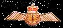 Navigator Lapel Pin Wing  4.5cm x 2.5 cm