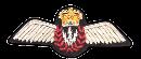 Airborne_electronic_sensor Badge