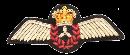 Flight_Engineer Wing