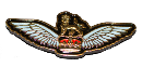 PLT( Army) Lapel Pin Wing