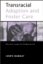 Transracial Adoption and Foster Care: Practice Issues for Professionals